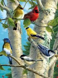 vogels-bulgarije
