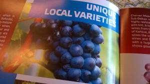 unieke-bulgaarse-druiven