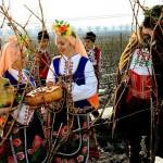 Bulgaars wijnfestijn Trifon Zarezan